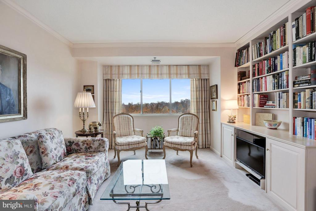 Library with built-in cabinets - 5600 WISCONSIN AVE #1208, CHEVY CHASE