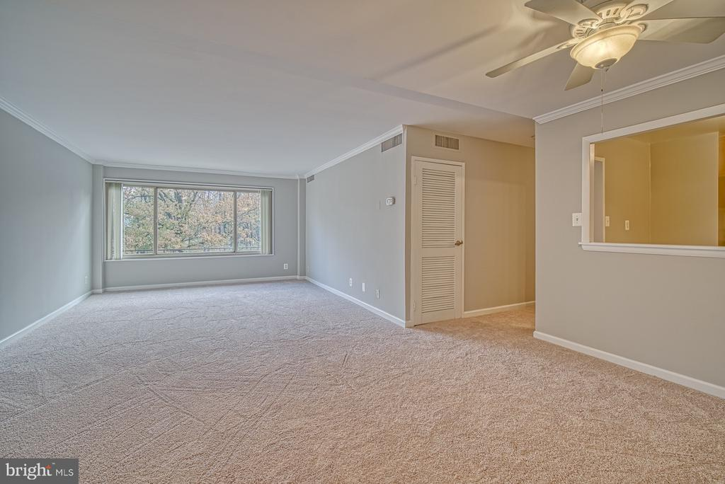 View from front door, wooded views - 10570 MAIN ST #520, FAIRFAX