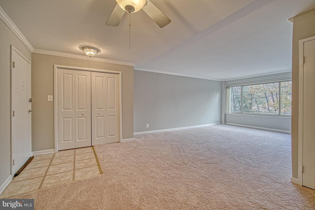 Dining room and living room - large coat closet - 10570 MAIN ST #520, FAIRFAX