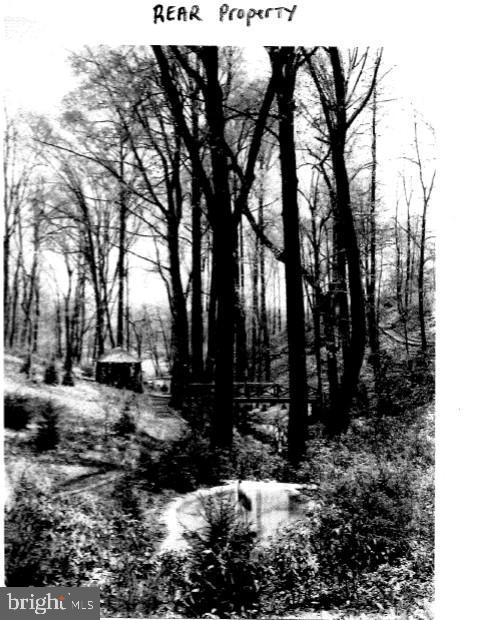 image 51