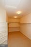 AND THE CLOSET  CONTINUES.... - 1351 VERRIER CT, VIENNA
