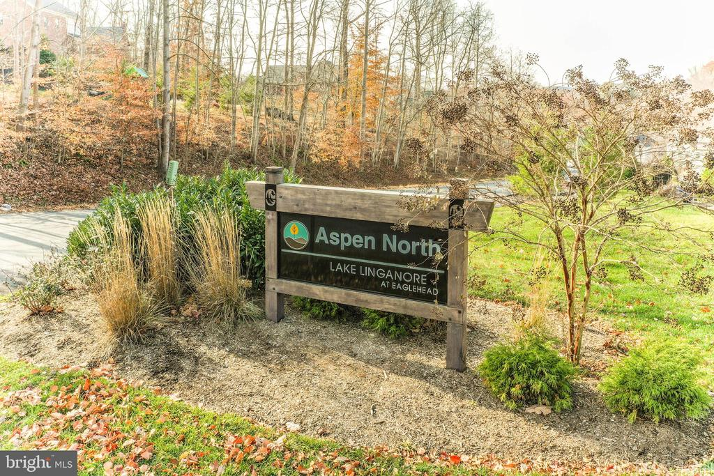 Surrounded by all new homes in Aspen North - 6804 W SHAVANO RD, NEW MARKET