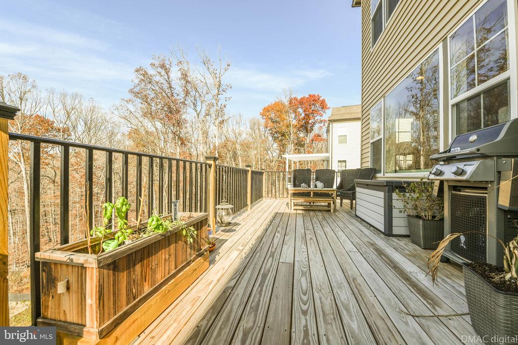 Bring the entertaining outside! - 6804 W SHAVANO RD, NEW MARKET