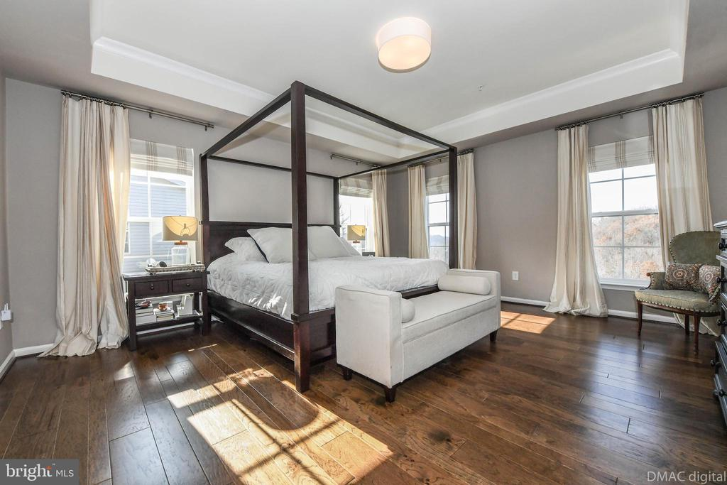 Large master bedroom with tray ceilings. - 6804 W SHAVANO RD, NEW MARKET