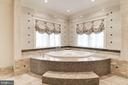 Corner Spa Tub - 904 CHINQUAPIN RD, MCLEAN