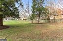 View from Front Door - 11831 DINWIDDIE DR, NORTH BETHESDA