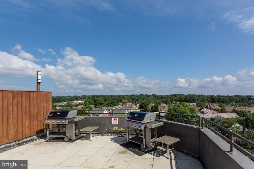 Rooftop Grills in Commonspace - 1024 N UTAH ST #721, ARLINGTON