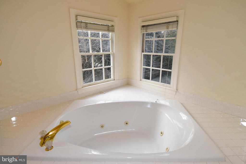 JACK AND JILL JETTED TUB - 8237 GALLERY CT, MONTGOMERY VILLAGE
