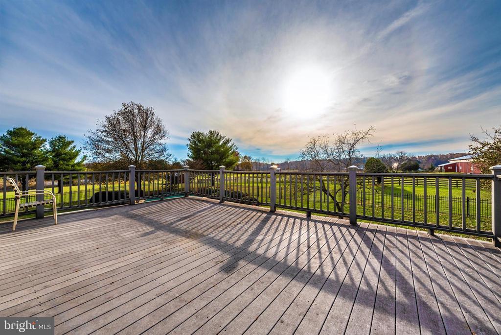 Master suite private terrace. - 5302 IJAMSVILLE RD, IJAMSVILLE