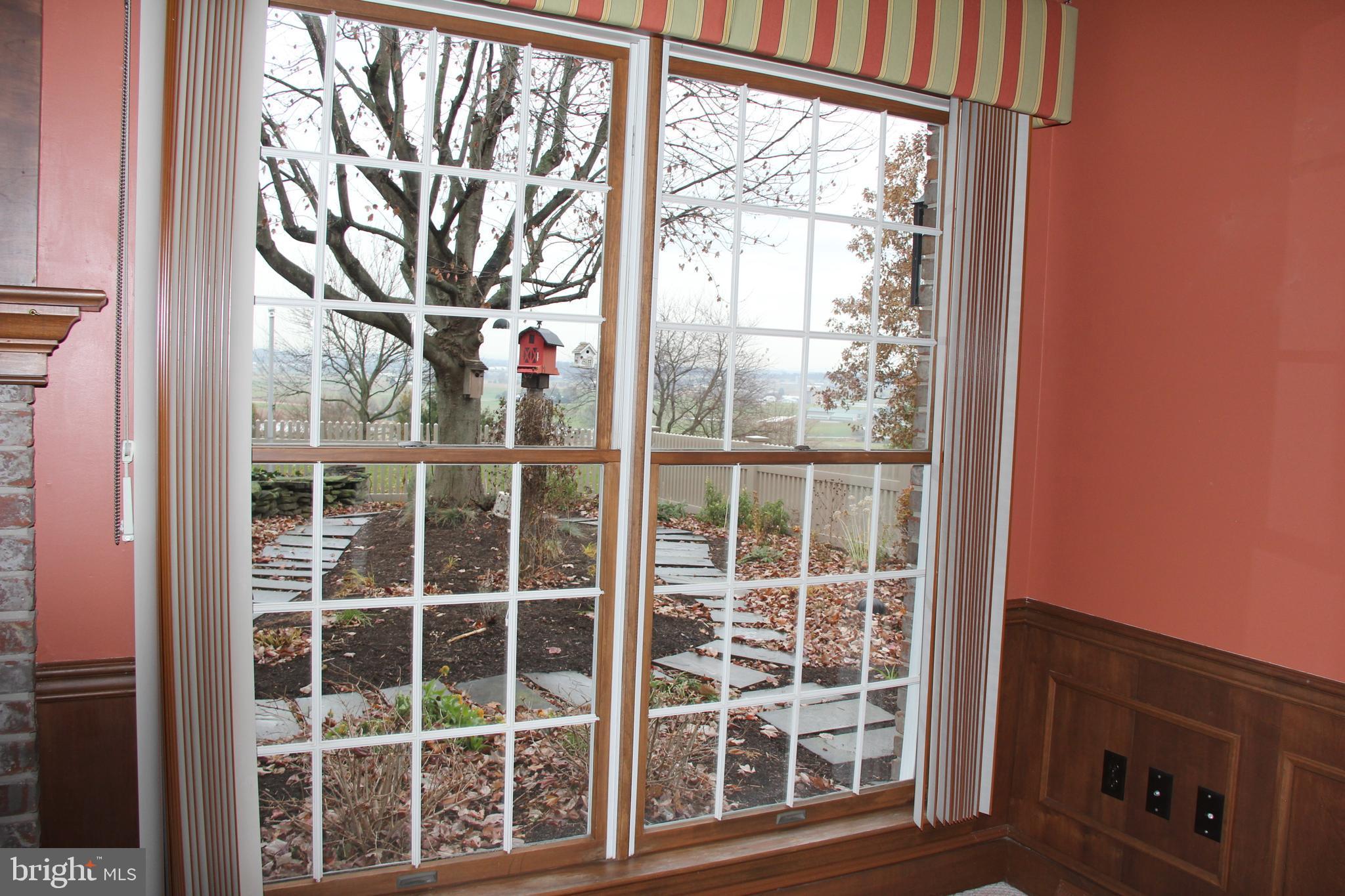 Window looking into  English Water Garden Area