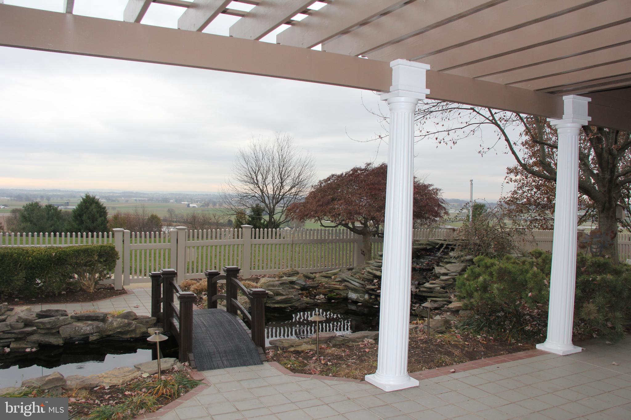 Water Garden off patio