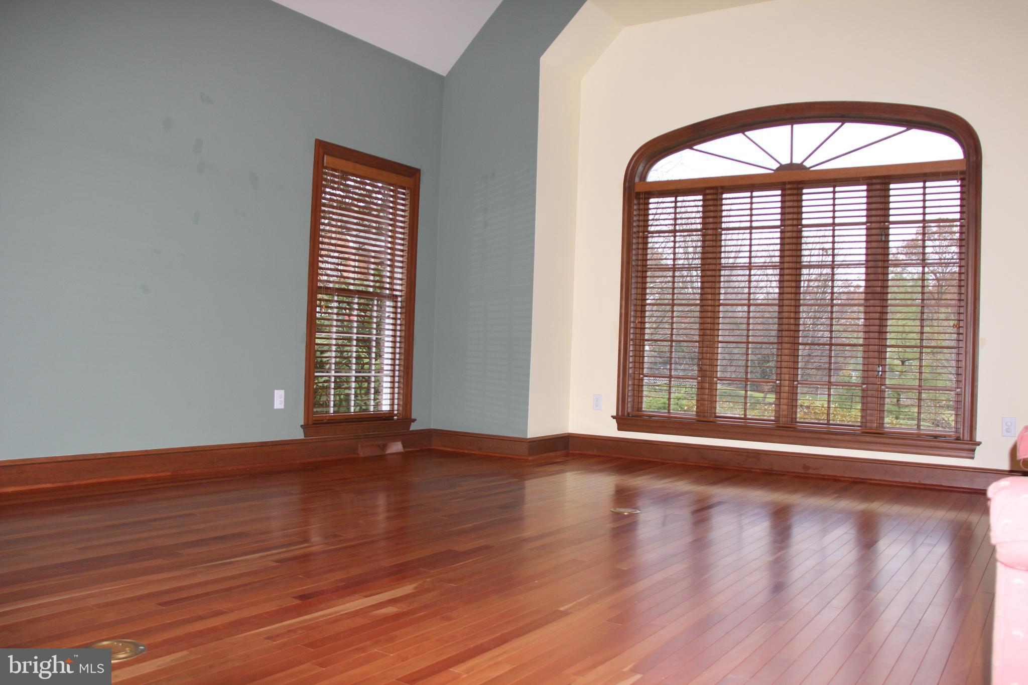 Second Family Room  off  Foyer