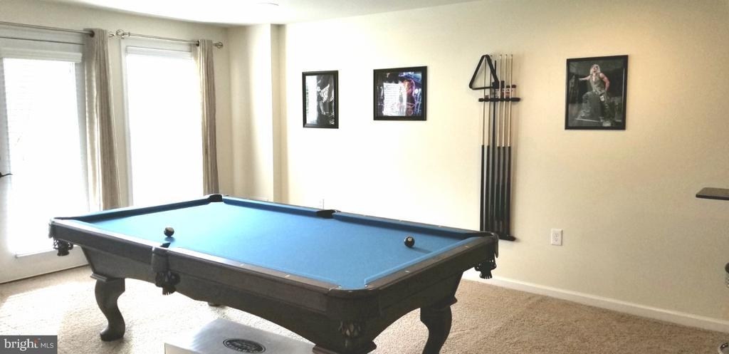 Pool Room Lower Level - 180 LONG POINT DR, FREDERICKSBURG