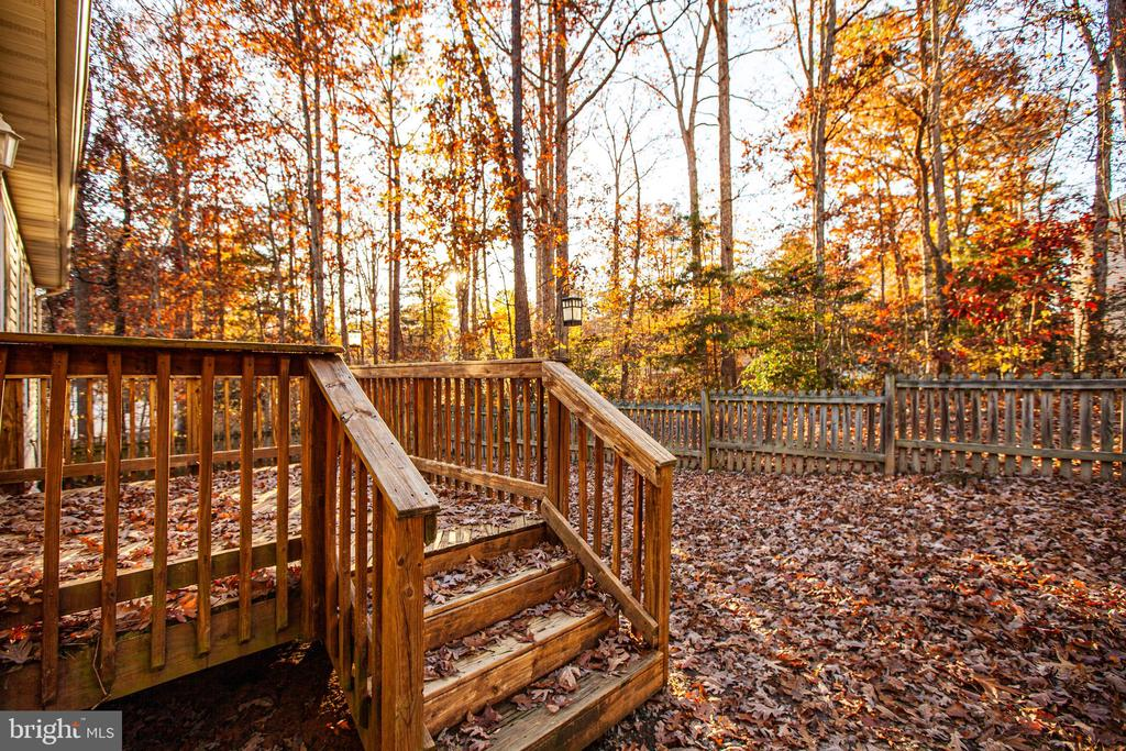 Back Porch and Fenced Rear Yard - 1005 LAKE HERITAGE DR, RUTHER GLEN