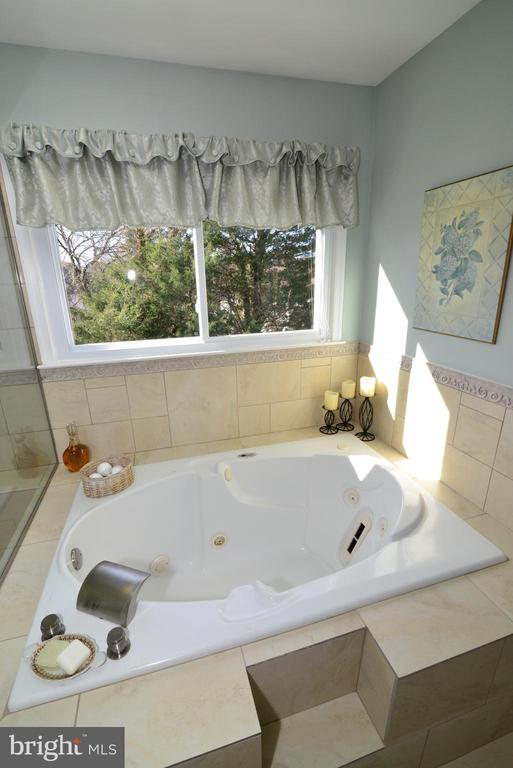 Jetted tub for ultimate relaxation - 13703 HOLTON PL, CHANTILLY