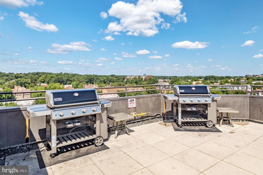 2 new Weber grills and views to DC - 1024 N UTAH ST #219, ARLINGTON