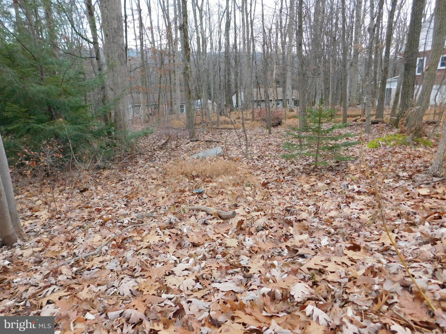 Land for Sale at Nesquehoning, Pennsylvania 18240 United States