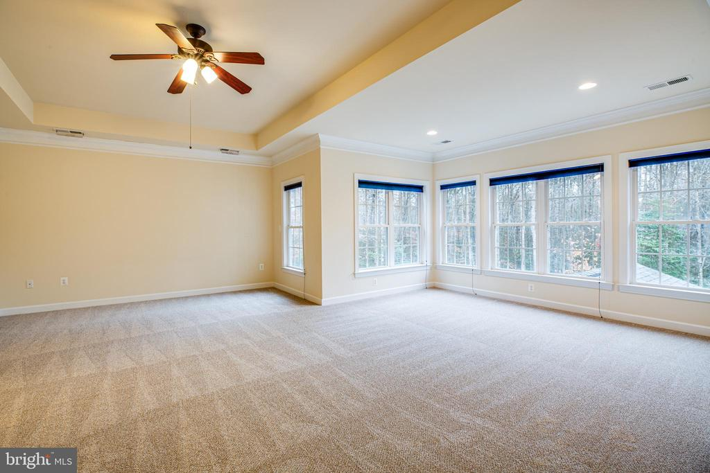 Owner's Suite wall of windows. ALL UL NEW CARPET. - 11500 BALMARTIN CT, SPOTSYLVANIA