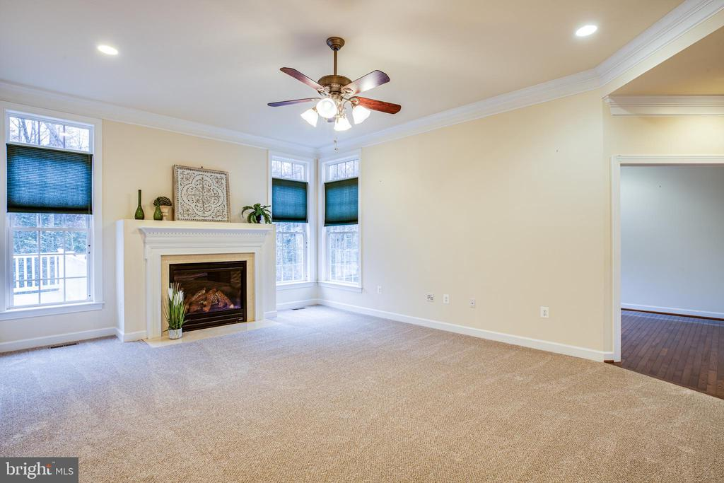 Main Level office access off Family Room. - 11500 BALMARTIN CT, SPOTSYLVANIA