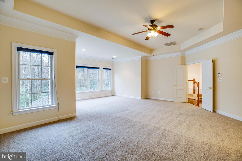 Upper Owner's Suite is bright and beautiful. - 11500 BALMARTIN CT, SPOTSYLVANIA