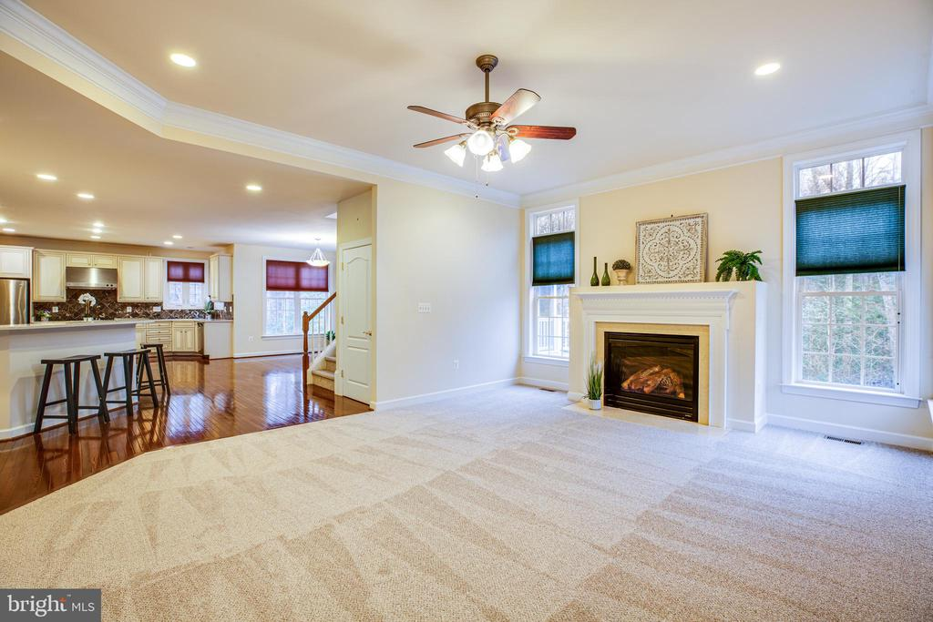 Family Room open to all the Kitchen Activities. - 11500 BALMARTIN CT, SPOTSYLVANIA
