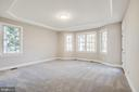 Master Bedroom features tray ceiling - 11502 GENERAL WADSWORTH DR, SPOTSYLVANIA