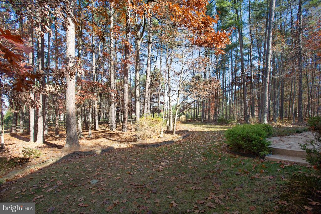 Privacy abounds in the backyard - 11502 GENERAL WADSWORTH DR, SPOTSYLVANIA