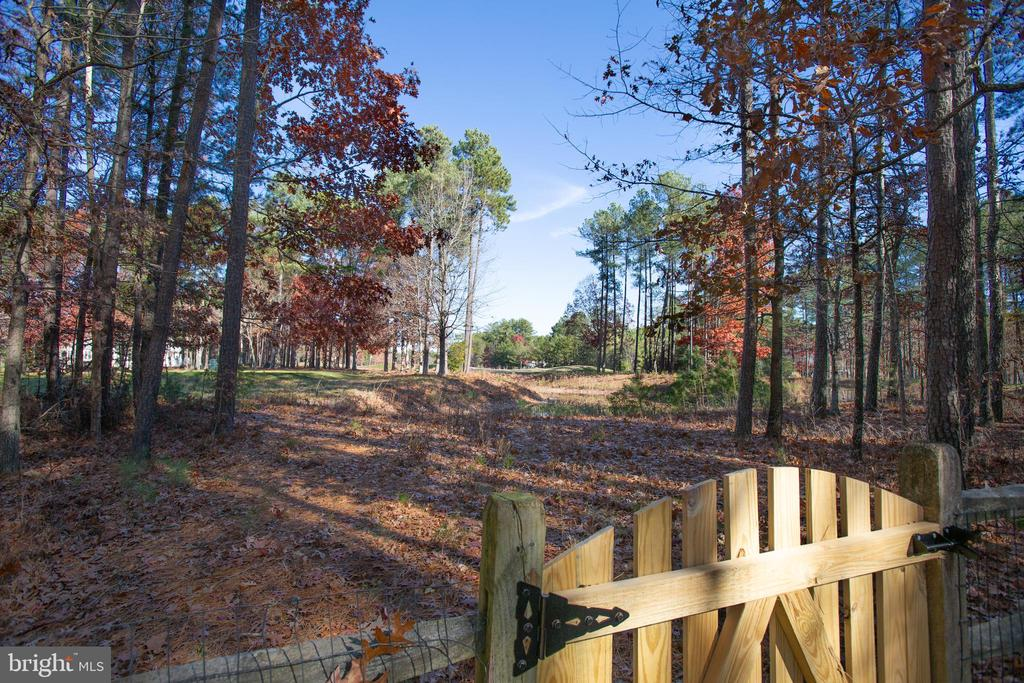 A sweet path leads out to the golf course - 11502 GENERAL WADSWORTH DR, SPOTSYLVANIA