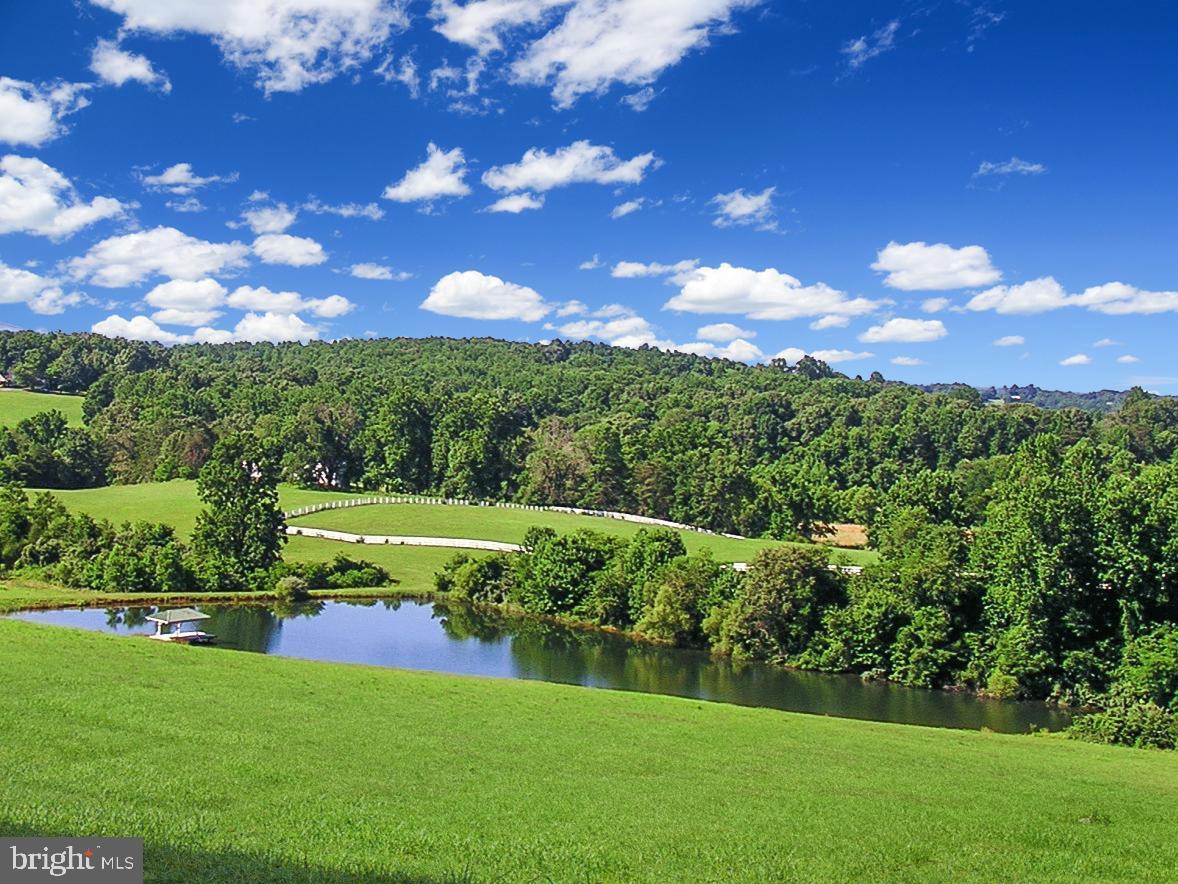 Single Family Homes のために 売買 アット Monroe, バージニア 24574 アメリカ