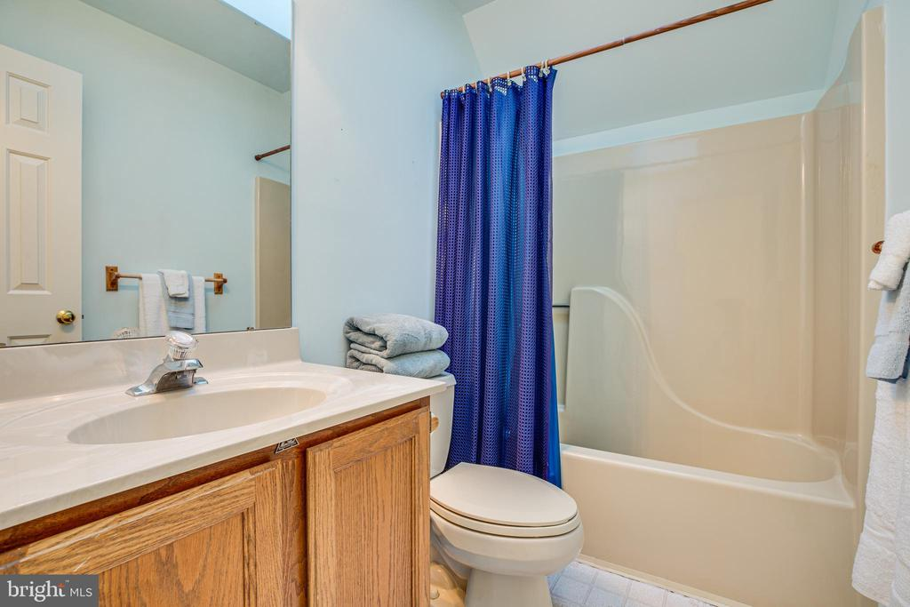 Full Shower  tub bath on upper level - Skylight - 113 EDGEHILL DR, LOCUST GROVE