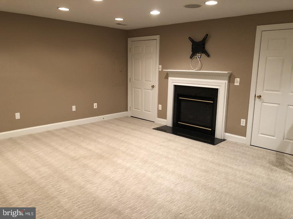 Lower Level - Rec Room - 530 N PITT ST, ALEXANDRIA