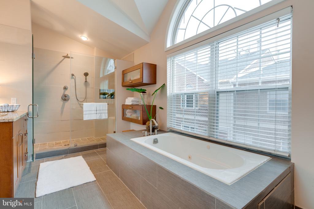 Master bath - 3028 S GLEBE RD #3028, ARLINGTON