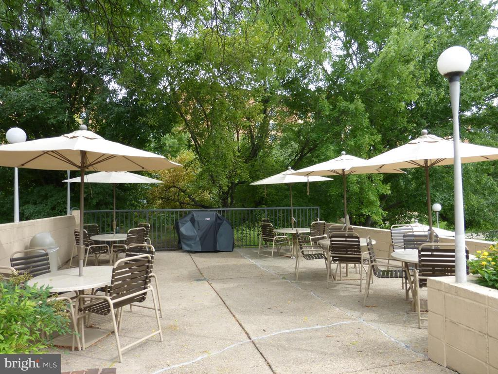 Patio area will grills - 1300 S ARMY NAVY DR #1005, ARLINGTON