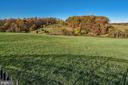 Pastures, fields and sream - 16311 BARNESVILLE RD, BOYDS