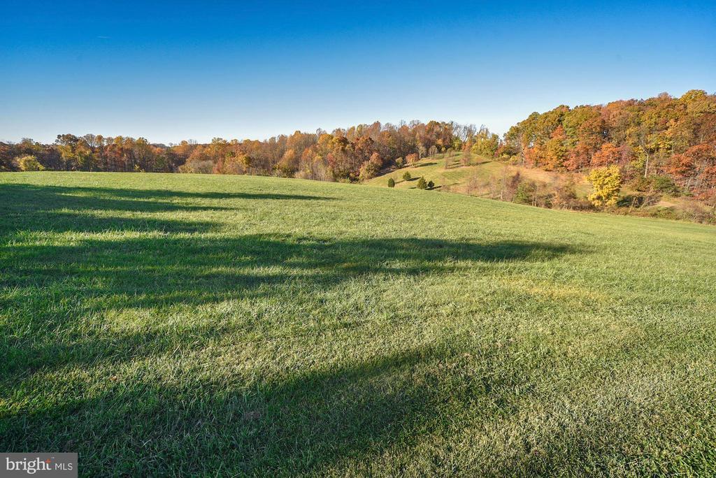 Equestrian trail around property - 16311 BARNESVILLE RD, BOYDS