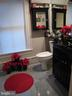 POINSETTIAS IN THE BATHROOM.! - 2010 FALL HILL AVE, FREDERICKSBURG