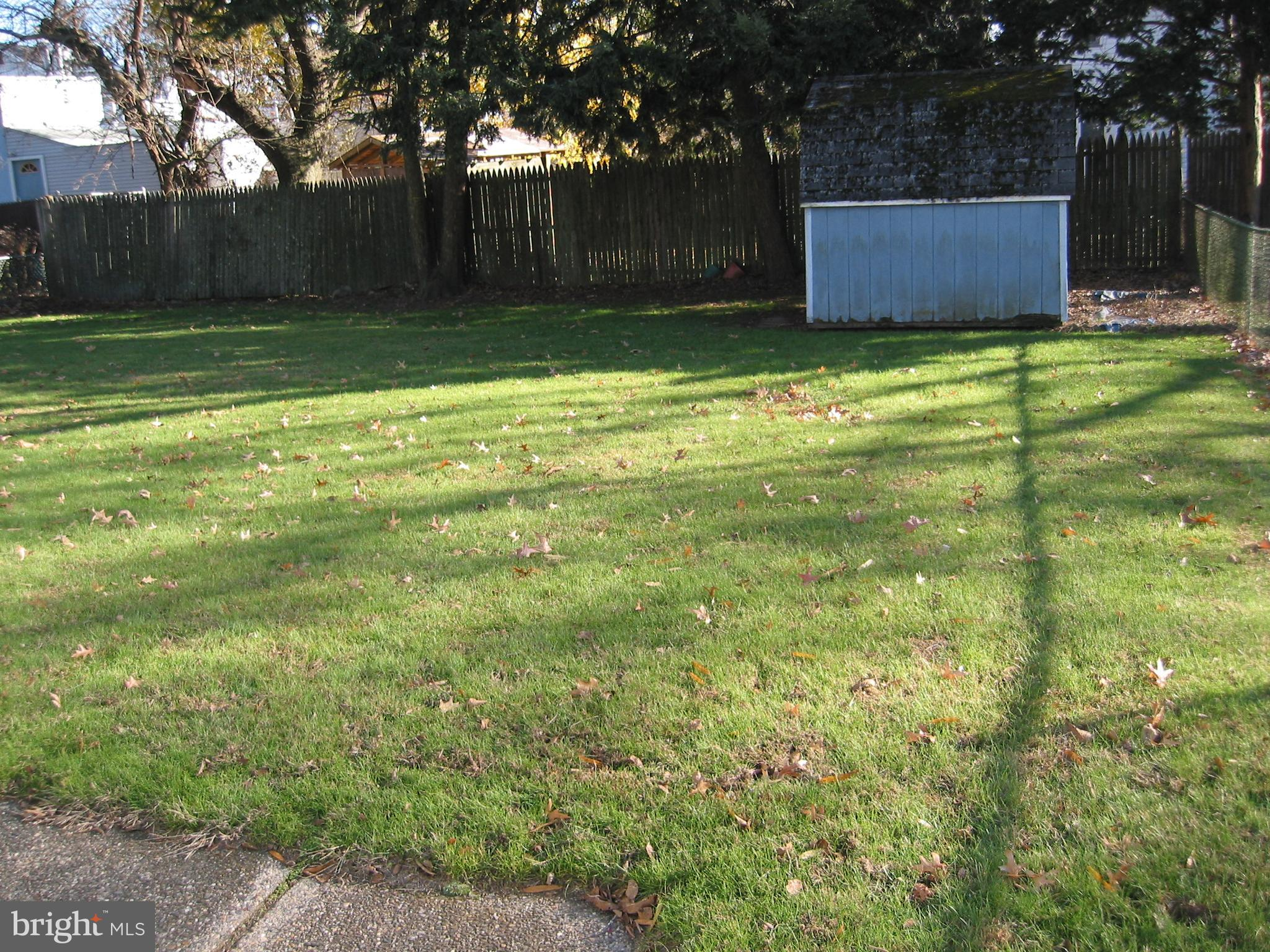 Large Fenced Backyard with Shed