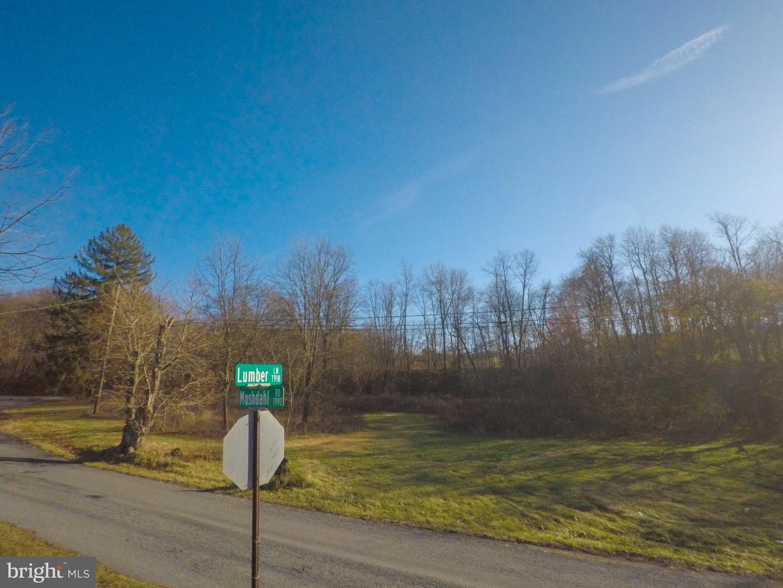 أراضي للـ Sale في New Ringgold, Pennsylvania 17960 United States