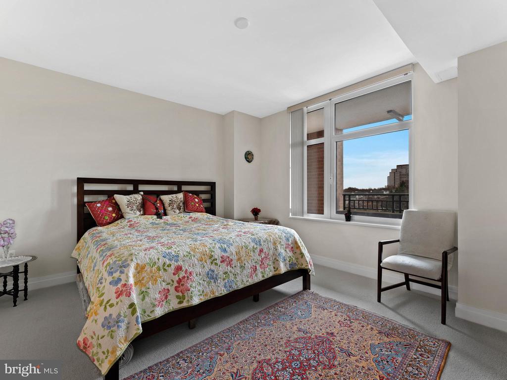 Master Bedroom - 8220 CRESTWOOD HEIGHTS DR #511, MCLEAN