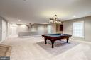 Fully finished walk out basement - 19999 BELMONT STATION DR, ASHBURN