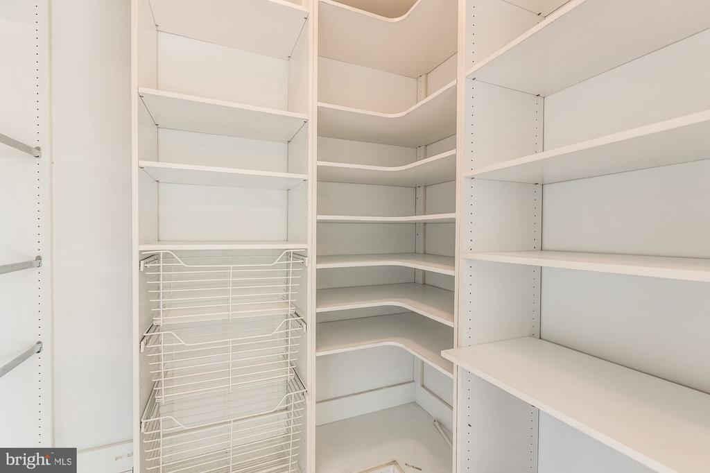 Fabulous  walk in master BR closet with organizers - 19999 BELMONT STATION DR, ASHBURN