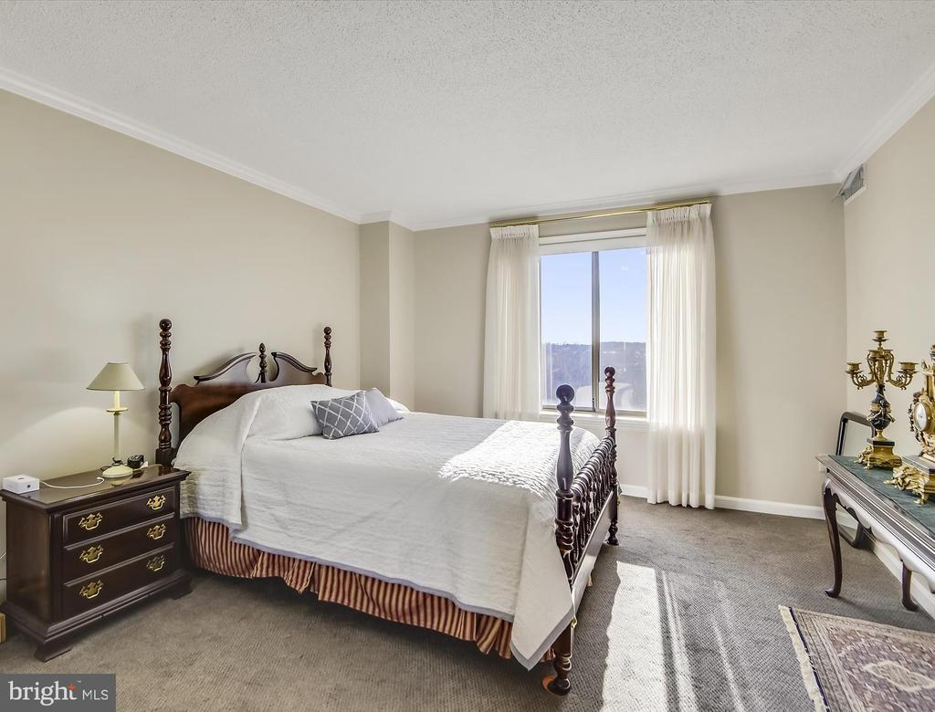 Private Master Suite with ensuite bath. - 19385 CYPRESS RIDGE TER #920, LEESBURG