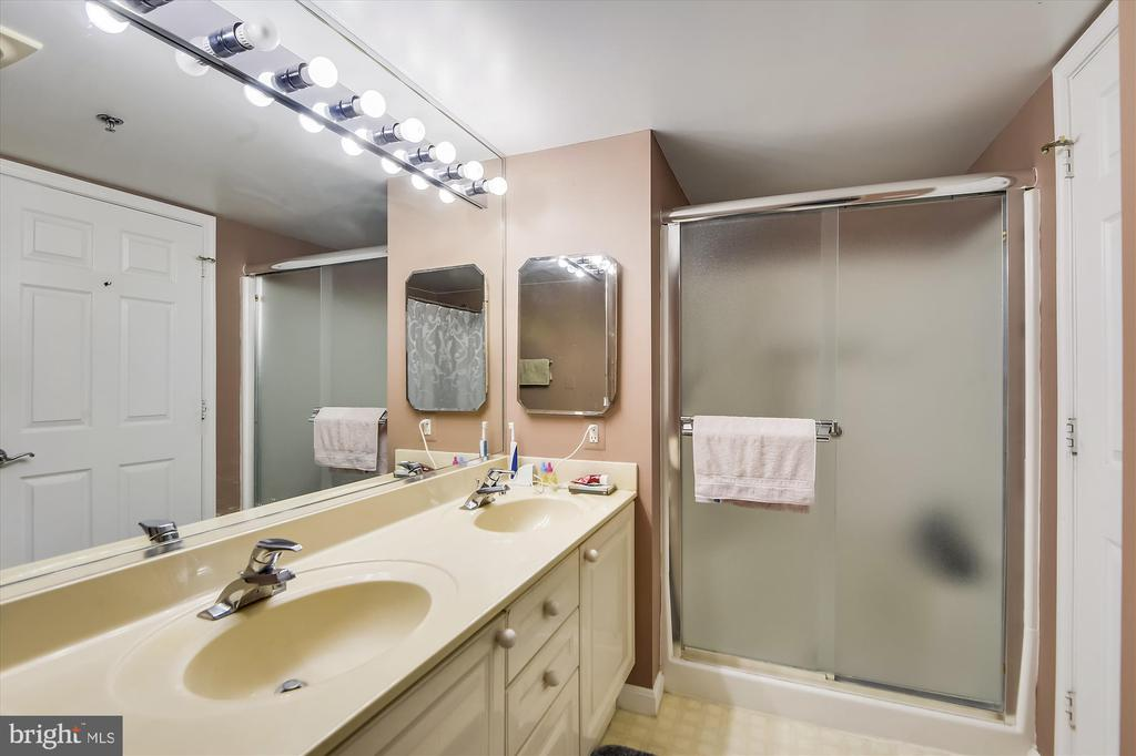 Master ensuite bathroom with separate shower. - 19385 CYPRESS RIDGE TER #920, LEESBURG