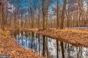 pond - 15009 SABILLASVILLE RD, THURMONT