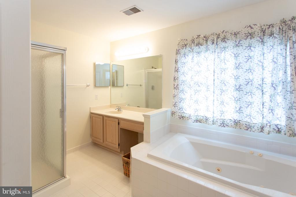 Separate Master bath with whirlpool tub - 20687 BROADWATER CT, STERLING