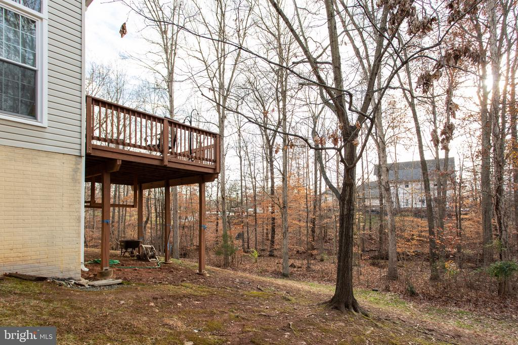 Backing to trees and small stream - 20687 BROADWATER CT, STERLING