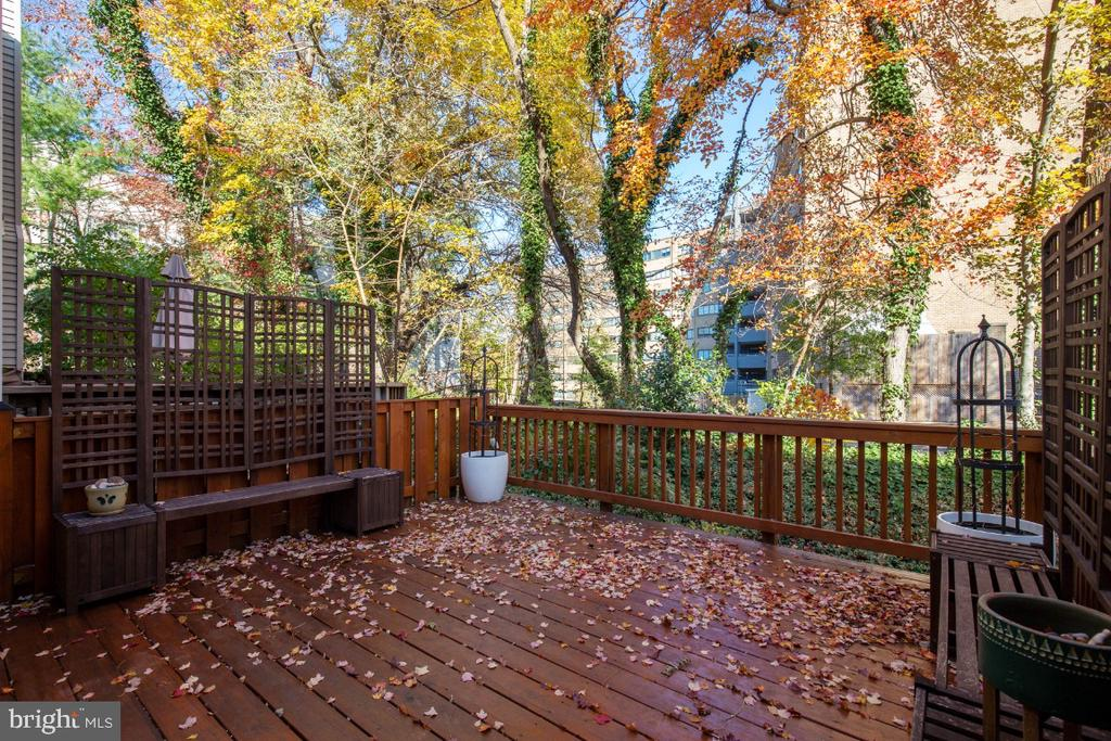Lovely outdoor space 4 grilling and summer nights - 395 S PICKETT ST, ALEXANDRIA