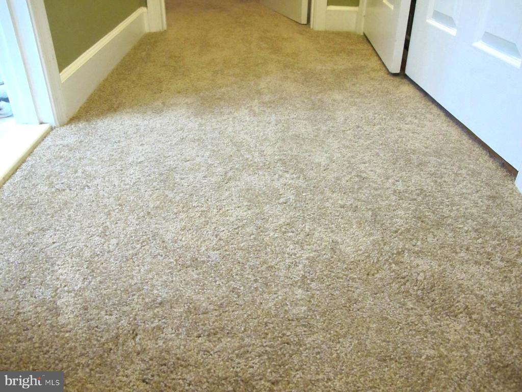 NEW Carpet and Paint throughout Second Floor - 3245 THEODORE R HAGANS DR NE, WASHINGTON