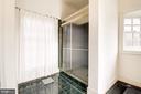 Master Bath shower - 20252 UNISON RD, ROUND HILL
