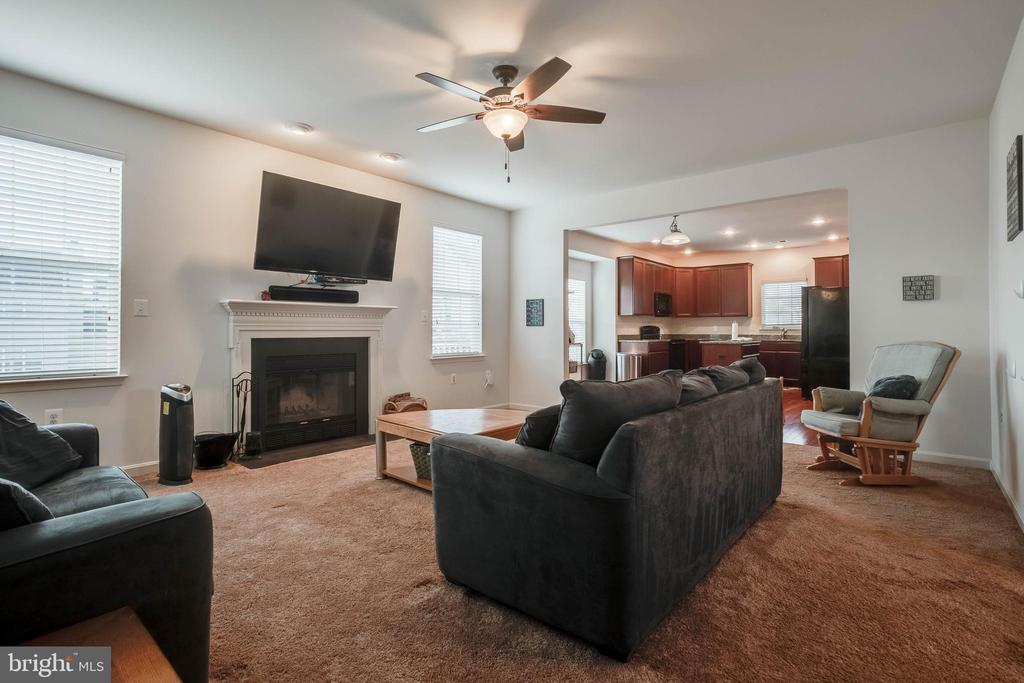 Family Room - 36083 WELLAND DR, ROUND HILL